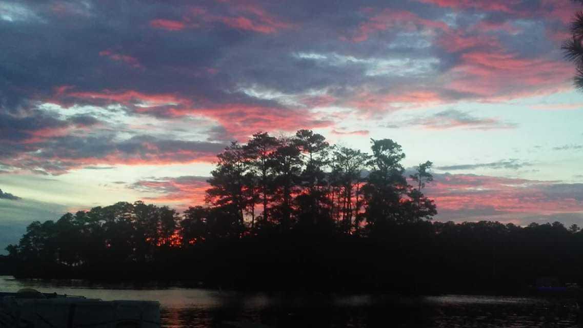 sunset-pink-leann-addy-fallin